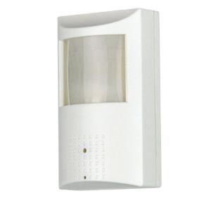 Covert Motion Detector Camera