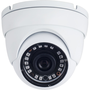 1MP IR Eyeball Camera